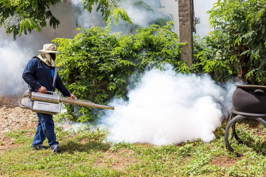 The Five Most Effective Ways of Guarding Your Home Against Pests